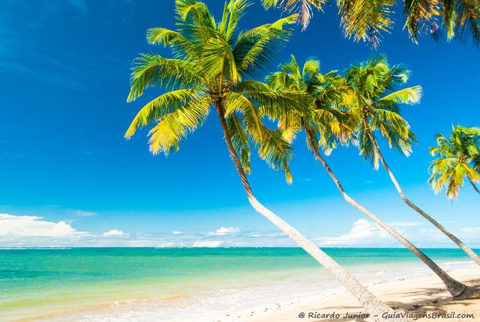 A Praia do Patacho é considerada uma das praias mais bonitas do Brasil, a paisagem dessa praia é paradisíaca. -  Photograph by Ricardo Junior / www.ricardojuniorfotografias.com.br