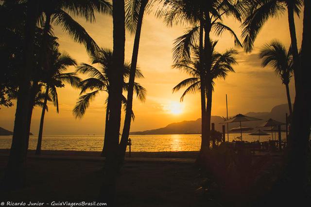 Coqueiros ao por do sol na Praia do Perequê, em Ilhabela. Photograph by Ricardo Junior / www.ricardojuniorfotografias.com.br
