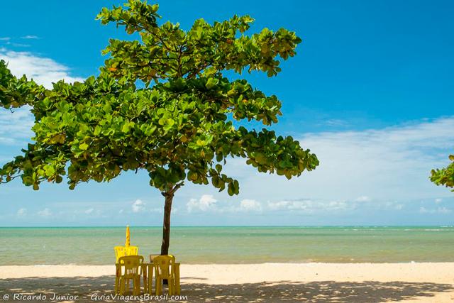 Praia de Curuípe, uma das mais tranquilas de Porto Seguro, na Bahia. Photograph by Ricardo Junior / www.ricardojuniorfotografias.com.br