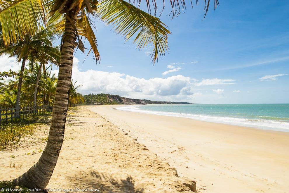 A Praia do Rio da Barra, emoldurada por coqueirais e falésias, em Trancoso, na Bahia. <br /> Photograph by Ricardo Junior / www.ricardojuniorfotografias.com.br