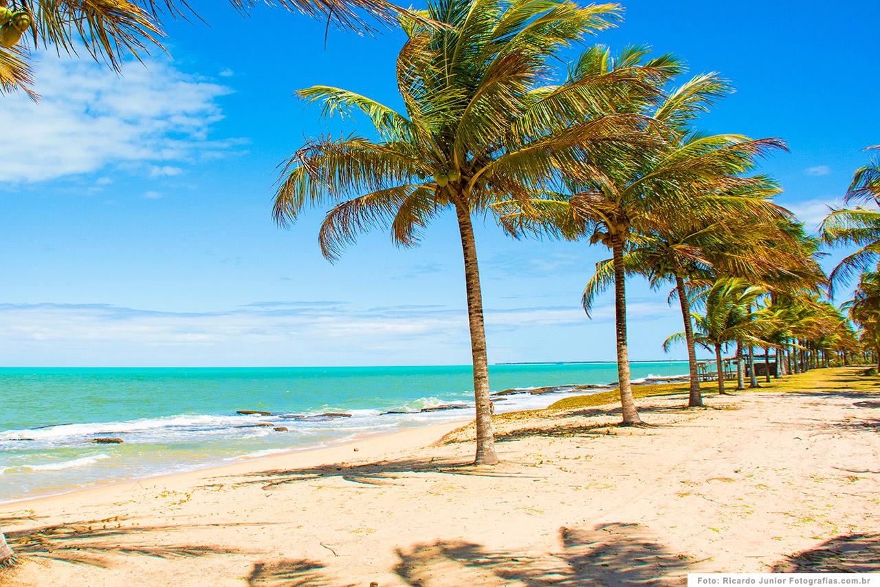 foto-caraiva-praia-repleta-de-coqueirais