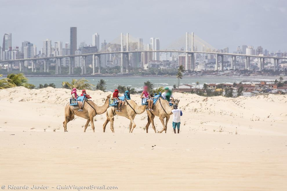 Passeio de dromedário nas Dunas de Genipabu, em Natal, RN. Fotos de Ricardo Junior / www.ricardojuniorfotografias.com.br