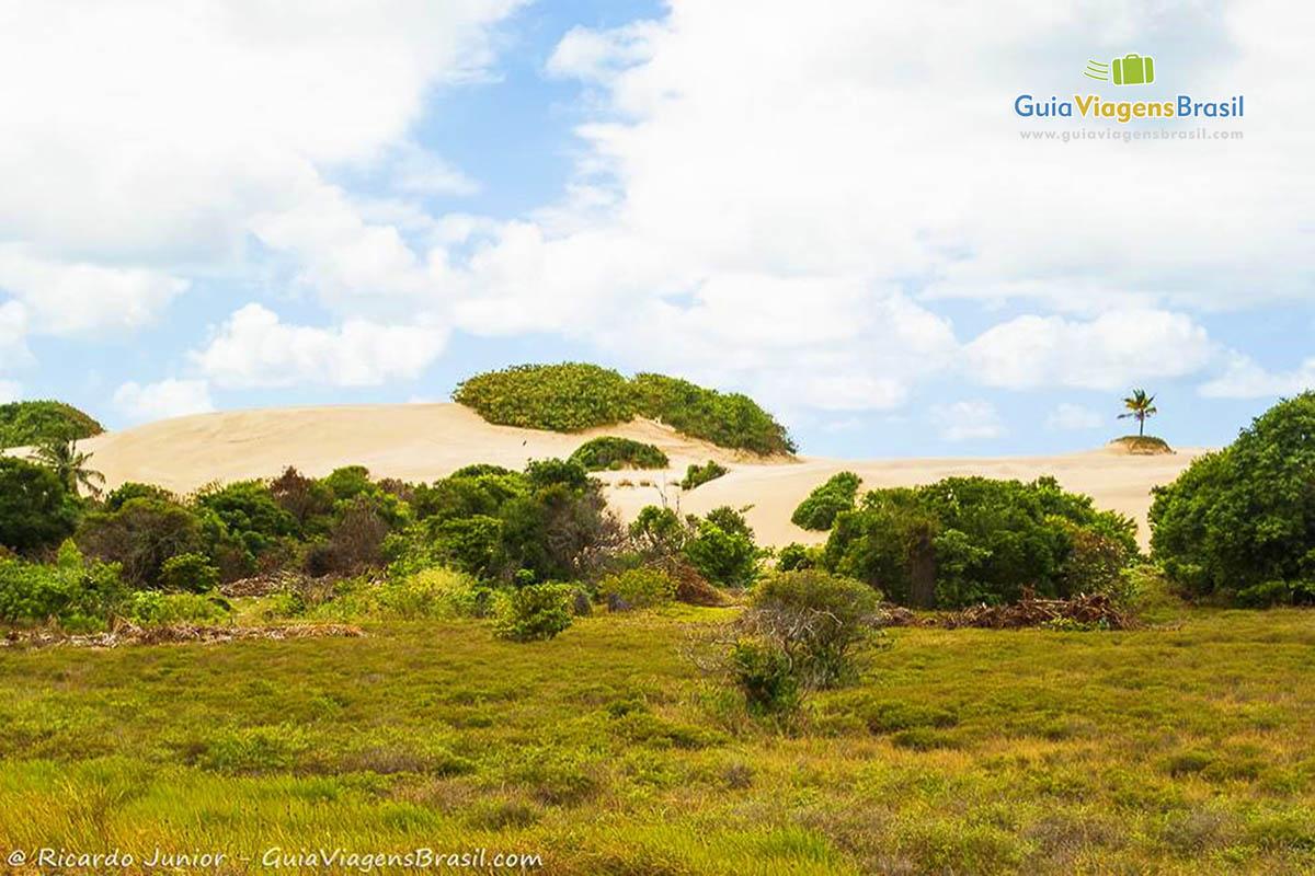 As dunas na Praia do Saco, Aracaju, SE. Fotos de Ricardo Junior / www.ricardojuniorfotografias.com.br