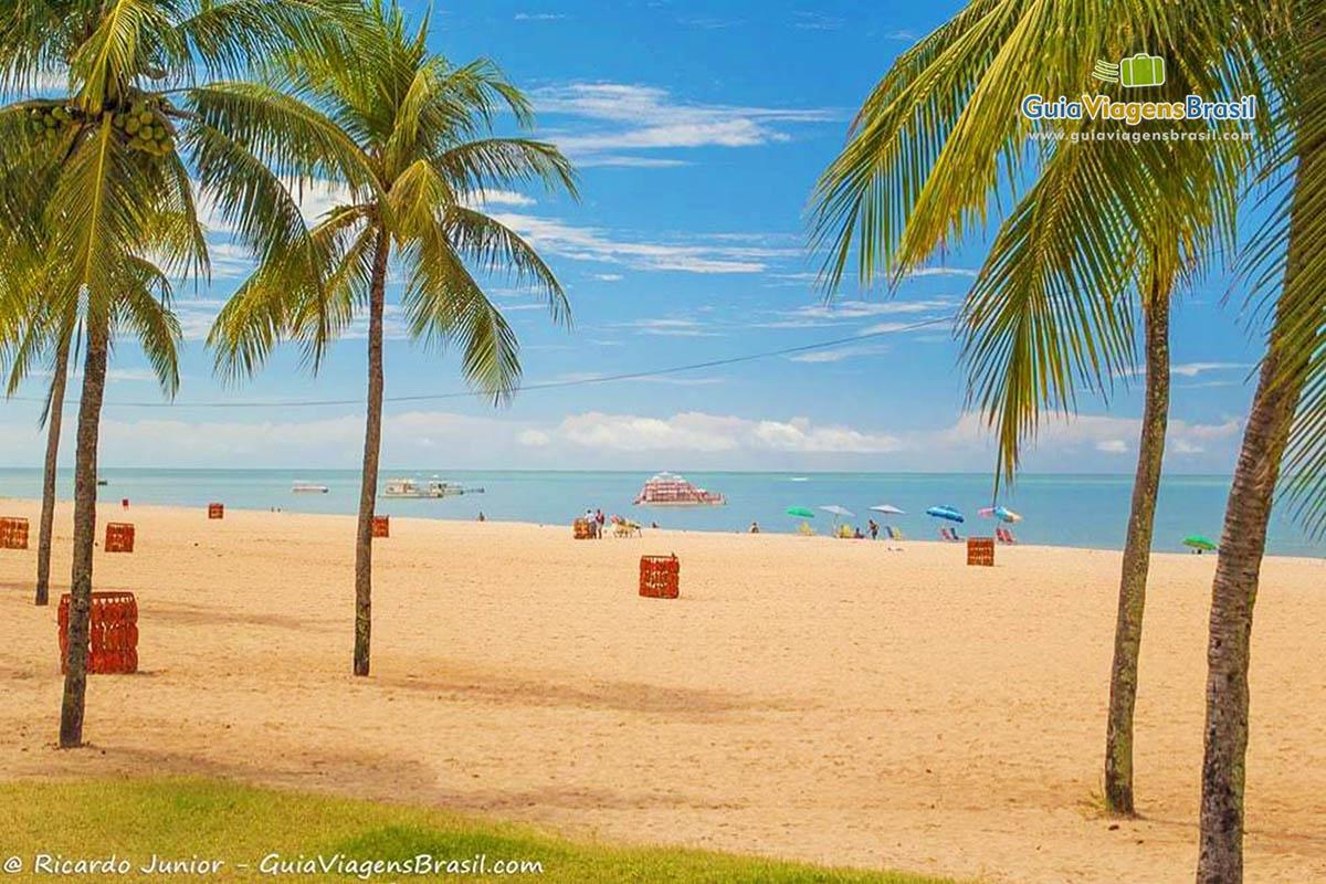 Os famosos coqueiros na Praia de Tambaú, em João Pessoa, PB. Fotos de Ricardo Junior / www.ricardojuniorfotografias.com.br