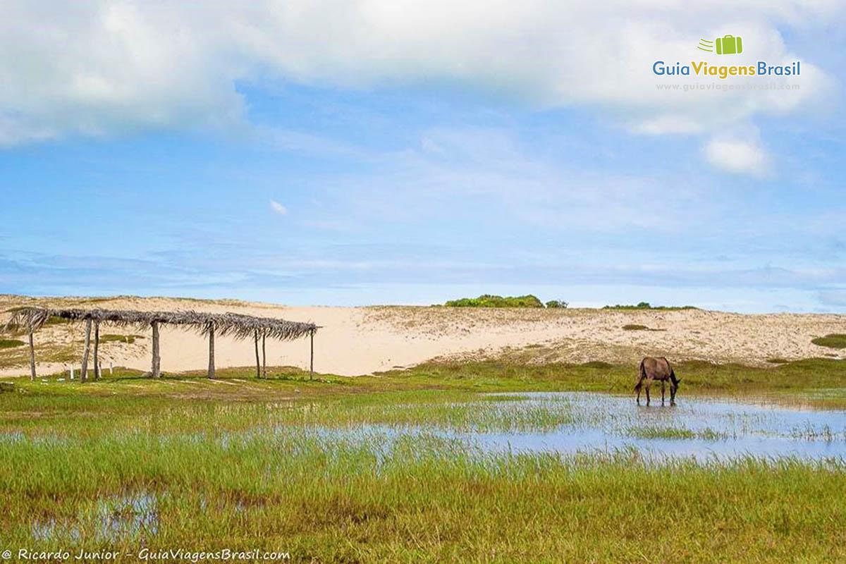 lagoa-pitangui-natal-4037