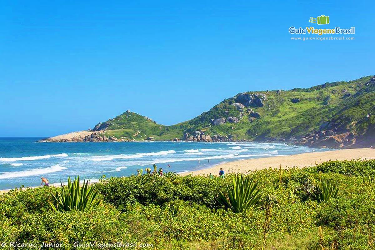 foto-praia-mole-florianopolis-sc