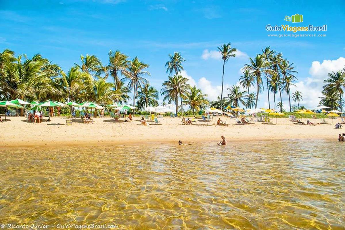 piscinas-naturais-papa-gente-praia-do-forte-ba