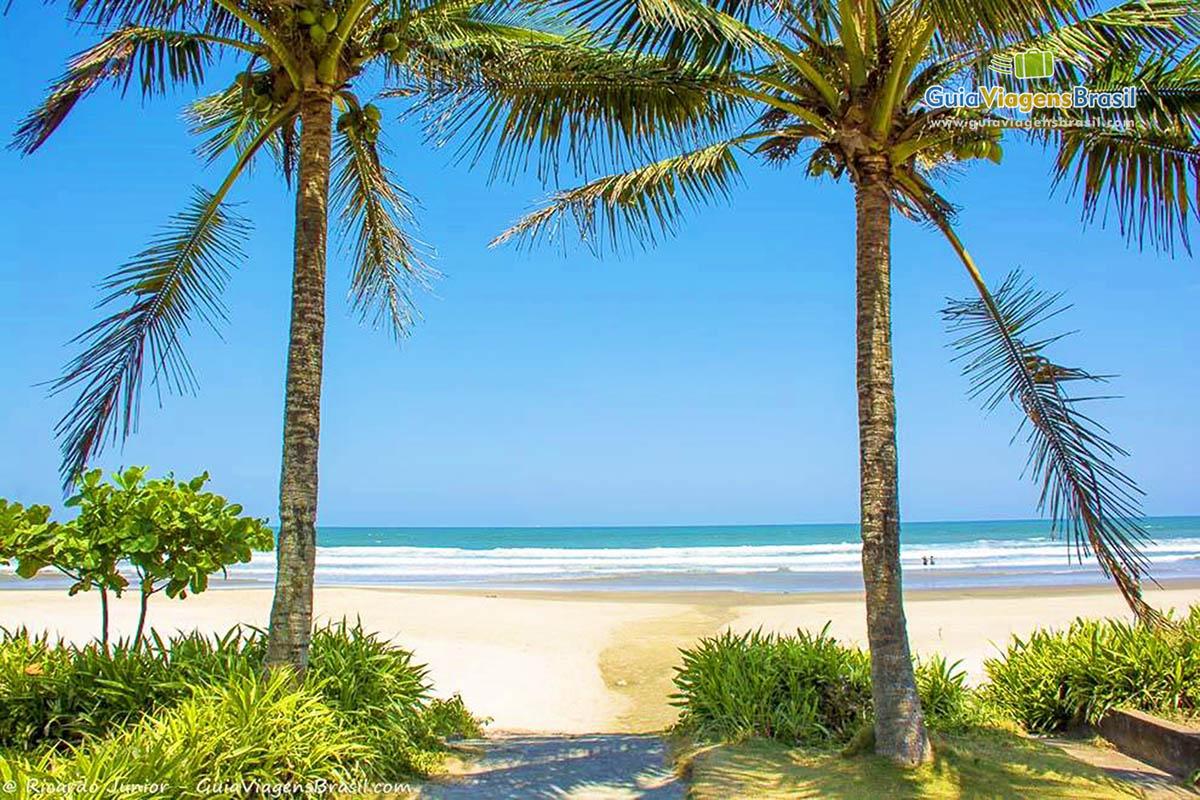 lindos-coqueiros-praia-itanhaem-sp