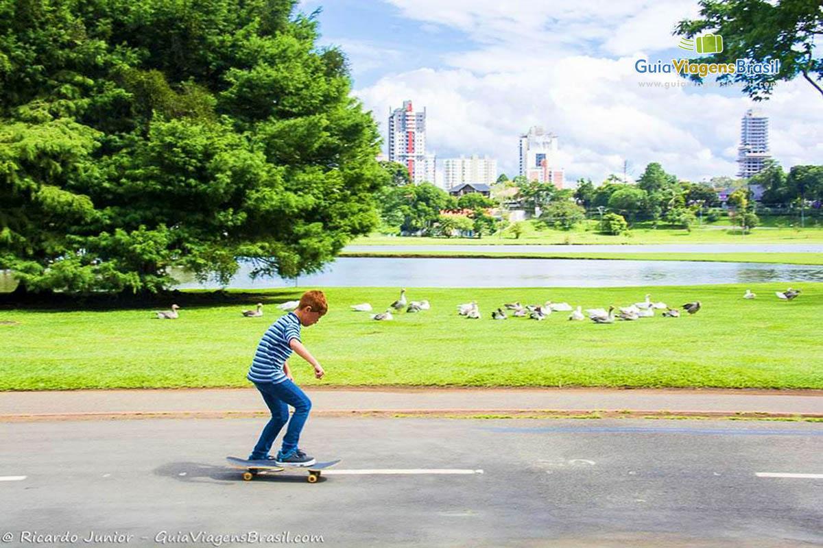 foto-parque-do-barigui-curitiba-parana-brasil-foto-6580