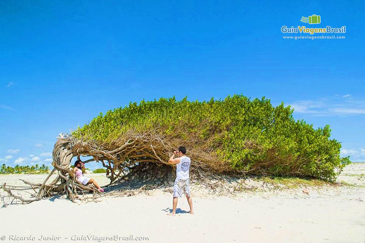 praia-deserta-jericoacoara