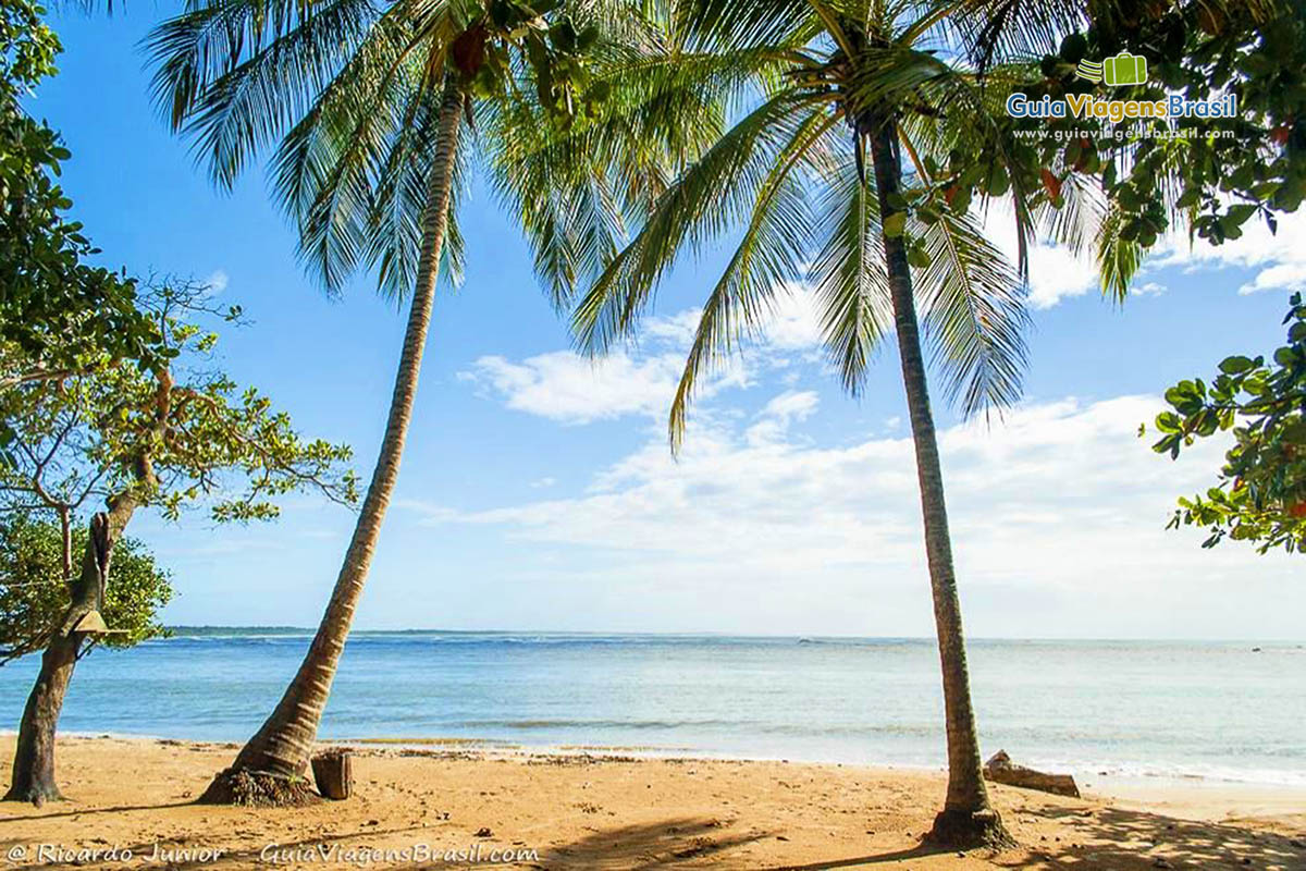 foto-praia-da-concha-em-itacare-bahia-8374