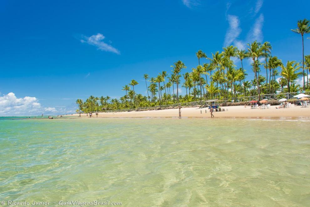 Imagem das águas cristalinas e ao fundo os lindos coqueiros-Praia Taipu de Fora-Bahia-BA