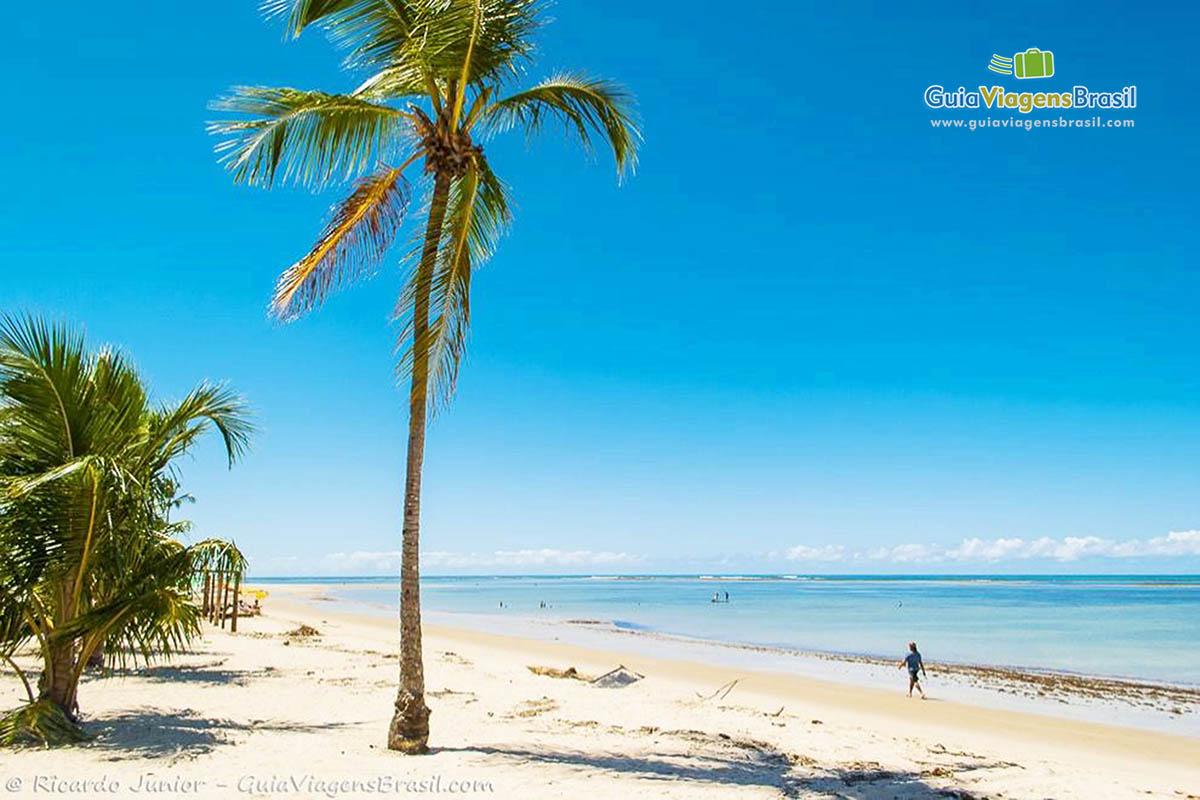 foto-praia-de-tamandare-em-pernambuco-6931