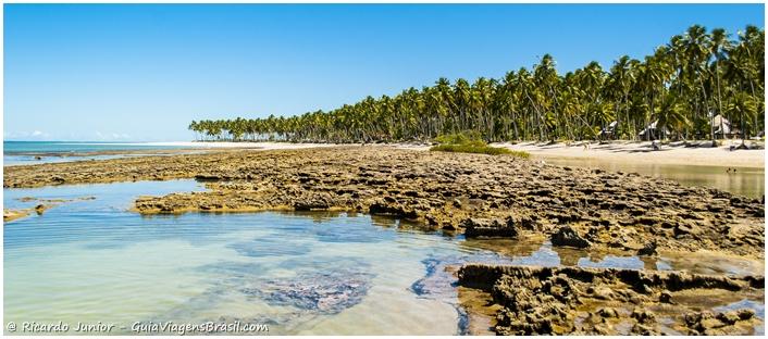 Foto da Praia dos Carneiros em Tamandaré, Pernambuco. - Photograph by Ricardo Junior / www.ricardojuniorfotografias.com.br