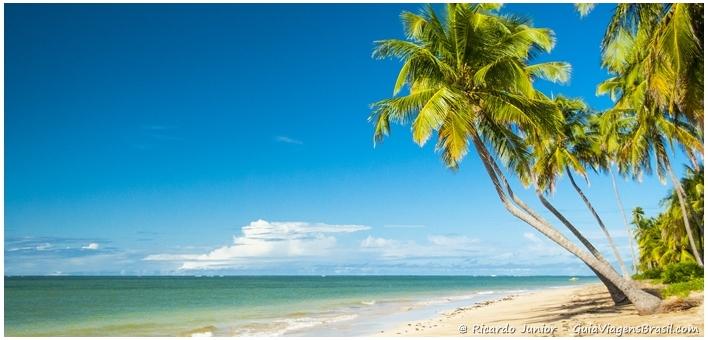 Foto da Praia do Patacho em Alagoas - Photograph by Ricardo Junior / www.ricardojuniorfotografias.com.br