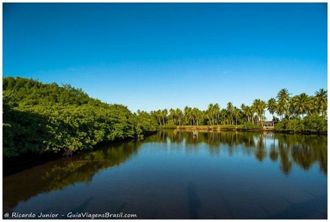 Foto do Rio Tatuamunha, em Porto de Pedras - Alagoas