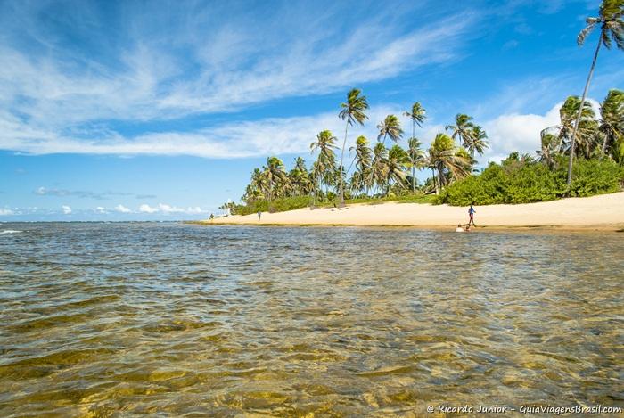 Foto da Praia do Forte, Bahia - Photograph by Ricardo Junior / www.ricardojuniorfotografias.com.br