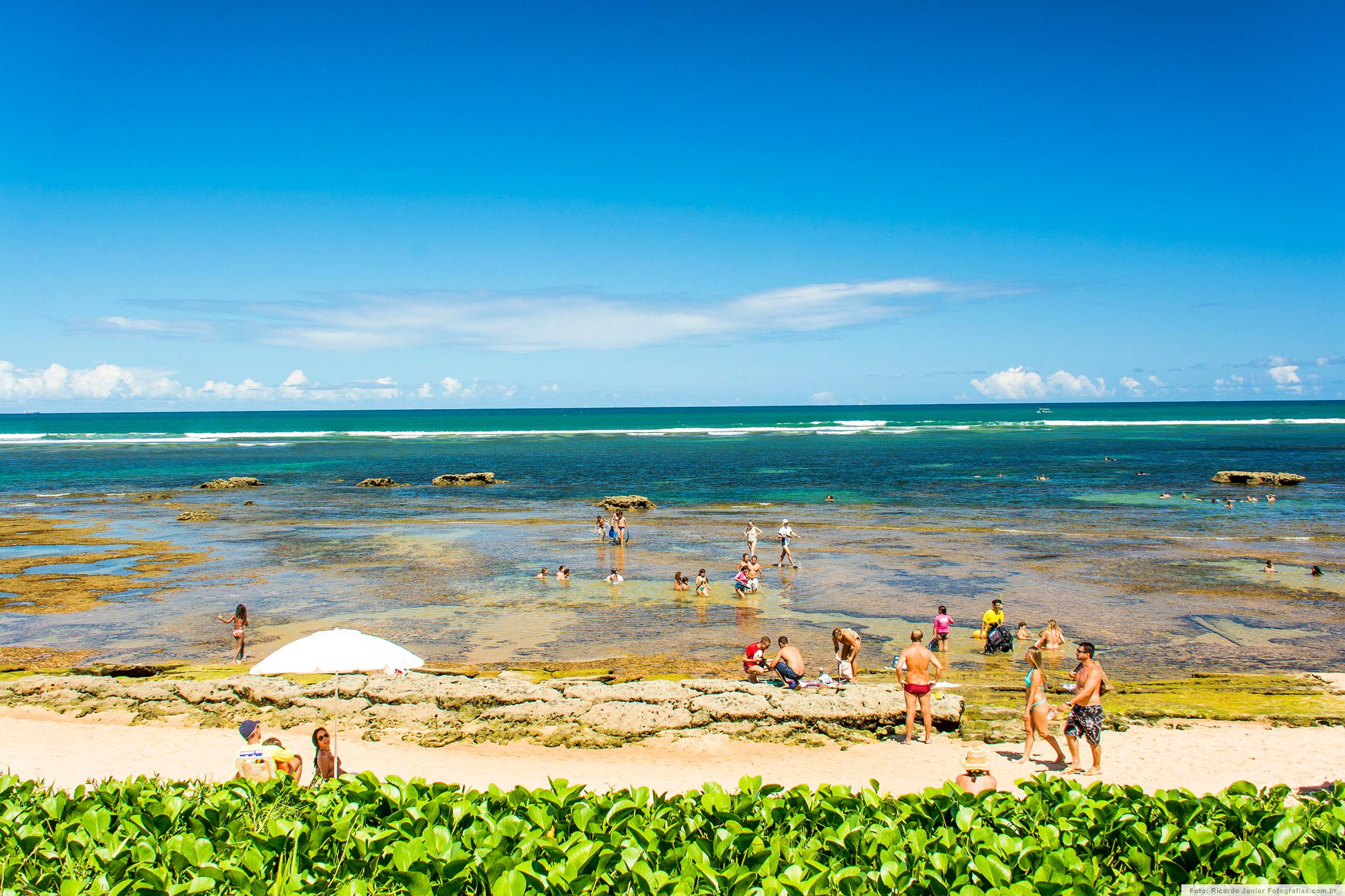 Piscinas Naturais da Praia do Forte - Bahia