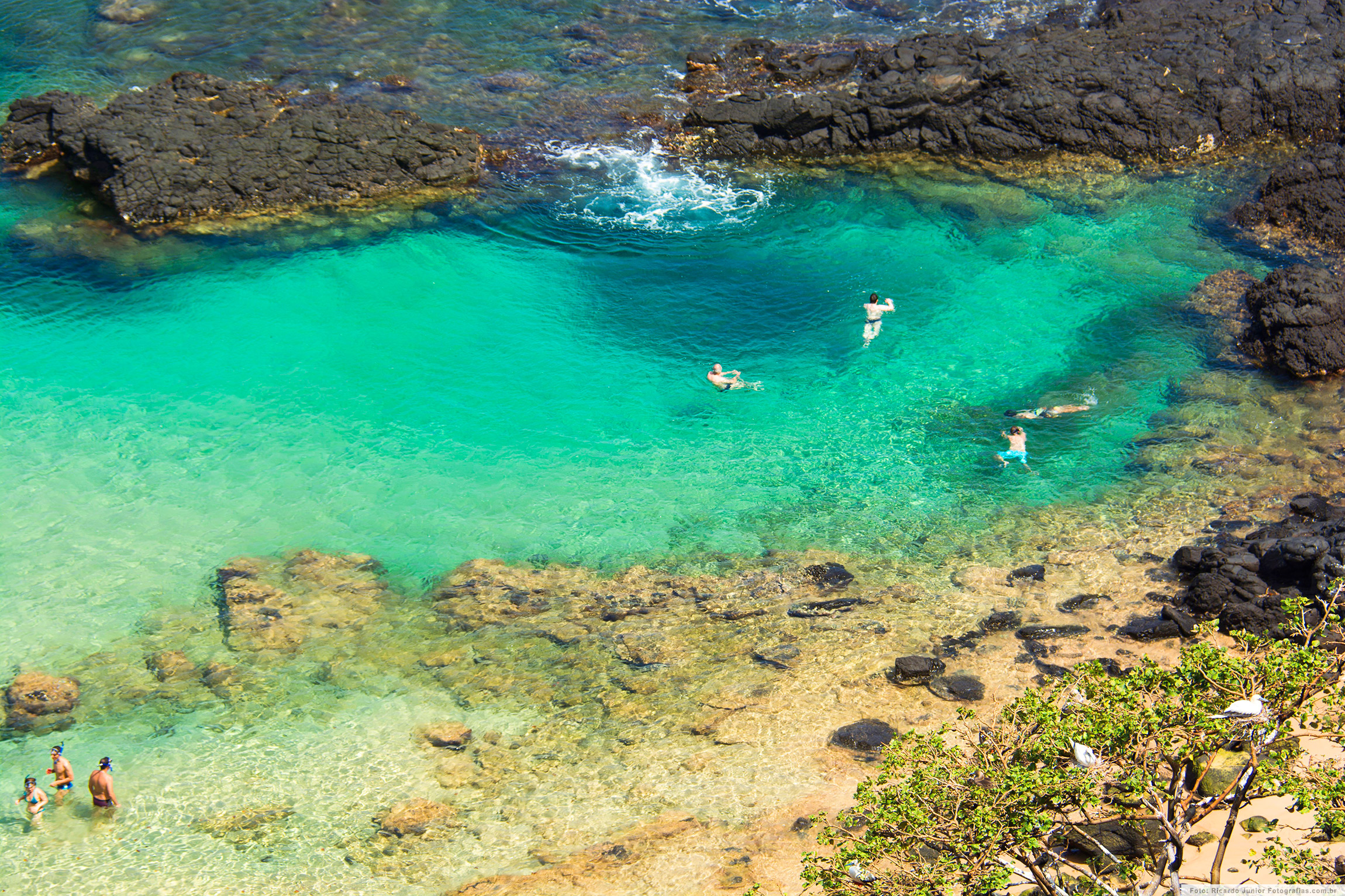 Piscinas Naturais da Baía dos Porcos, em Fernando de Noronha – Foto: Ricardo Junior