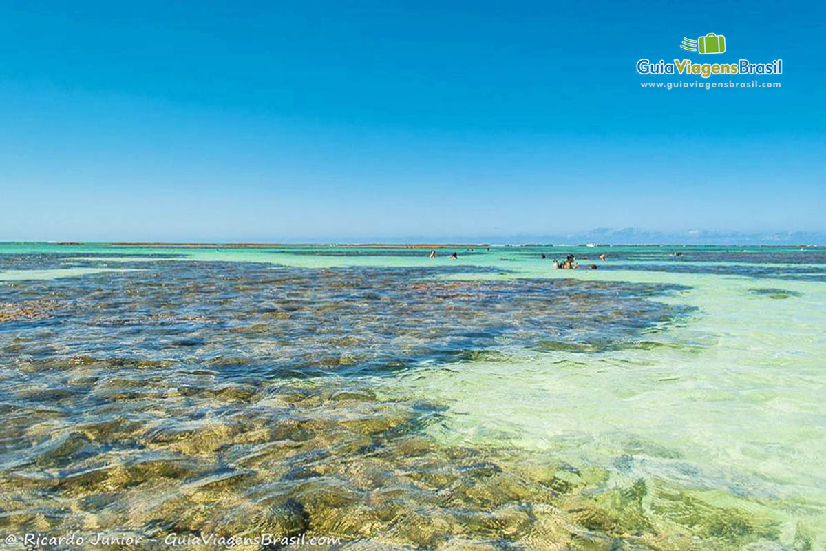 Galés, as Piscinas Naturais de Maragogi, em Alagoas. Fotos de Ricardo Junior / www.ricardojuniorfotografias.com.br