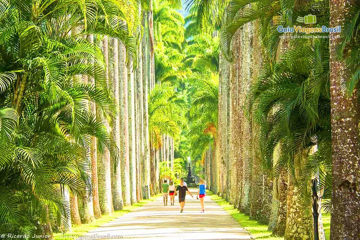pessoas-caminhando-jardim-botanico-rj