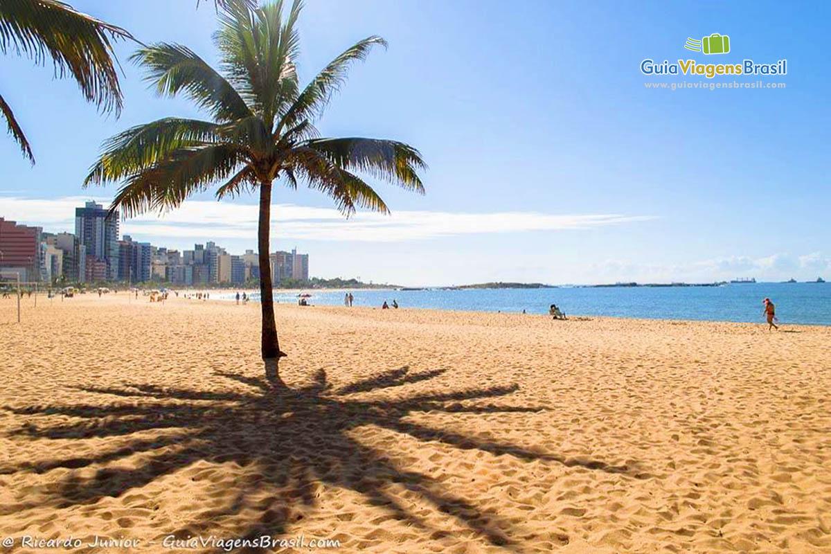 coqueiro-praia-da-costa-vila-velha