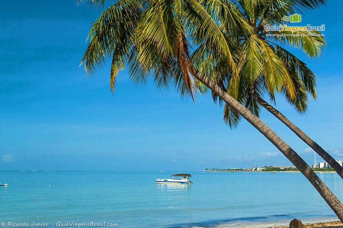 bela-paisagem-praia-ponta-verde-maceio-al-4513