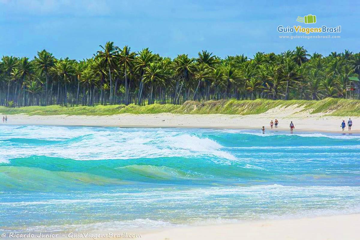 foto-praia-do-frances-em-alagoas-brasil-3781