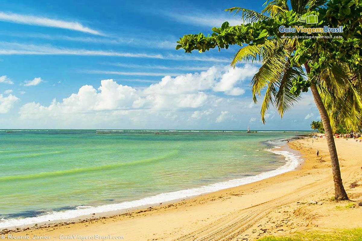 mar-esverdeado-praia-ponta-verde-maceio-al-3588
