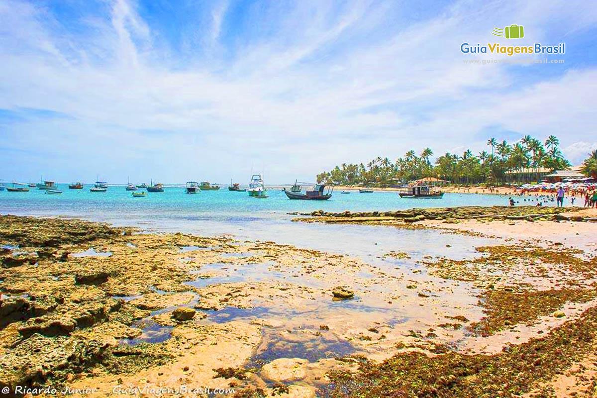 foto-praia-do-forte-na-bahia-brasil-1801