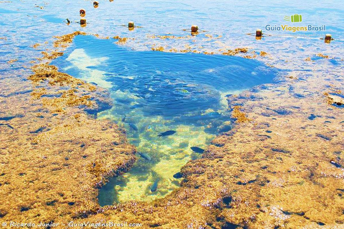 foto-piscina-natural-em-porto-de-galinhas-pernambuco-6703