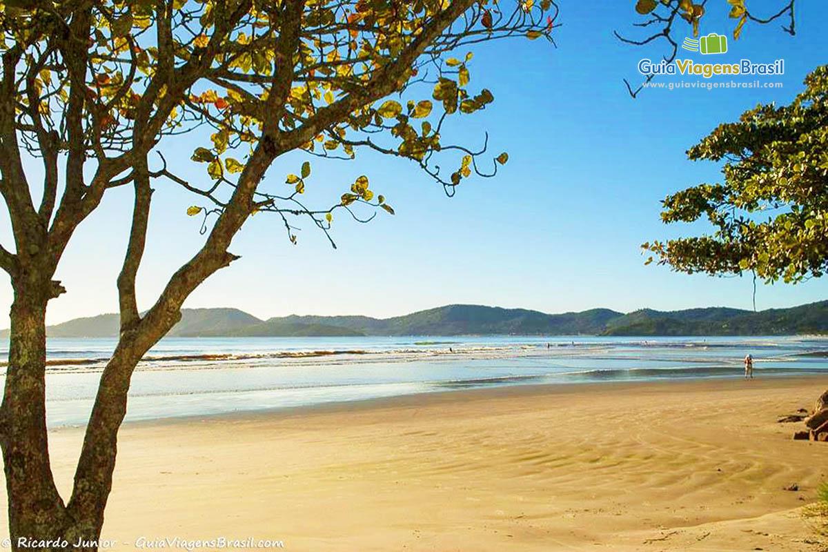linda-meia-praia-itapema-sc