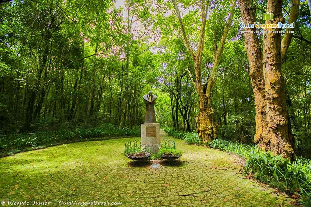 foto-bosque-joao-paulo-ii-em-curitiba-parana-brasil-foto-6223