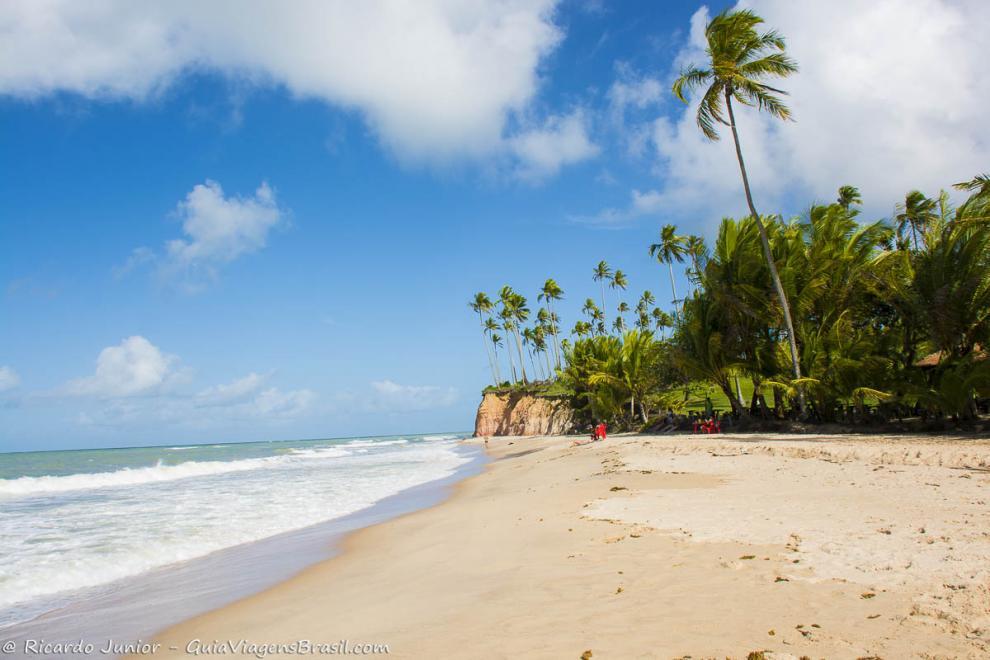 Imagem das areias claras e coqueiros altos na Praia Barra do Cahy-Cumuruxatiba-Bahia-BA