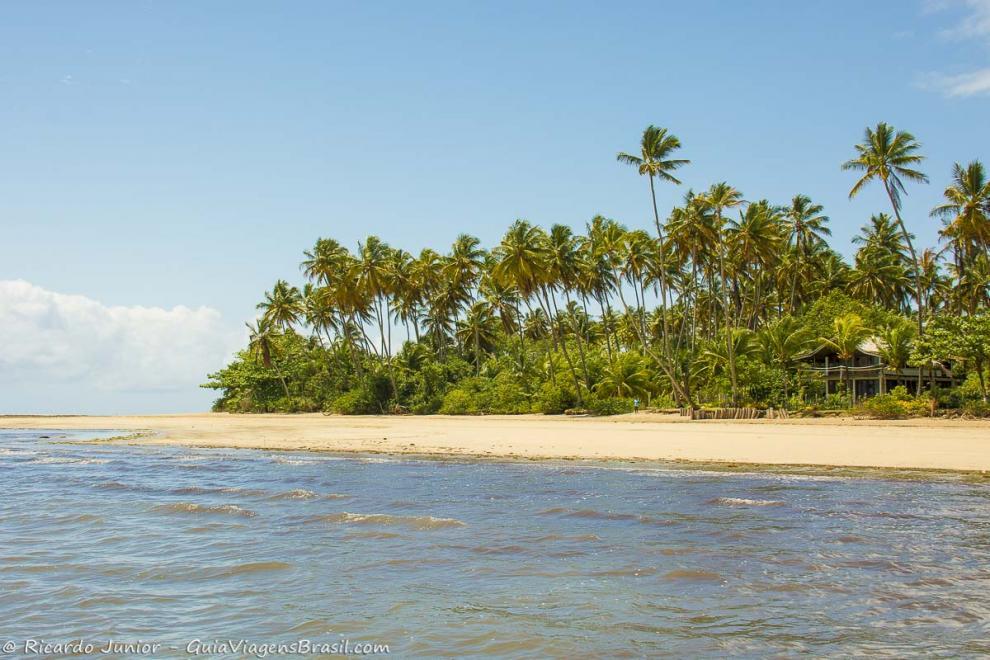Imagem das belezas naturais da Praia de Bainema-Ilha de Boipeba-Bahia