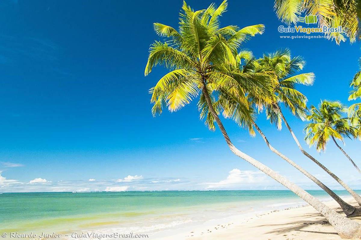 foto-praia-lage-e-praia-patacho-em-alagoas-7581