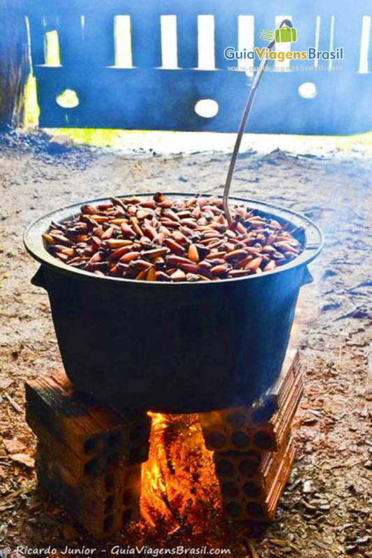 foto-turismo-rural-e gastronomia-em-urubici-sc-brasil-0720
