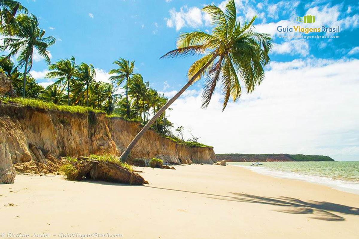 Foto da orla da linda praia de Carro Quebrado, em Barra de Santo Antônio, AL.