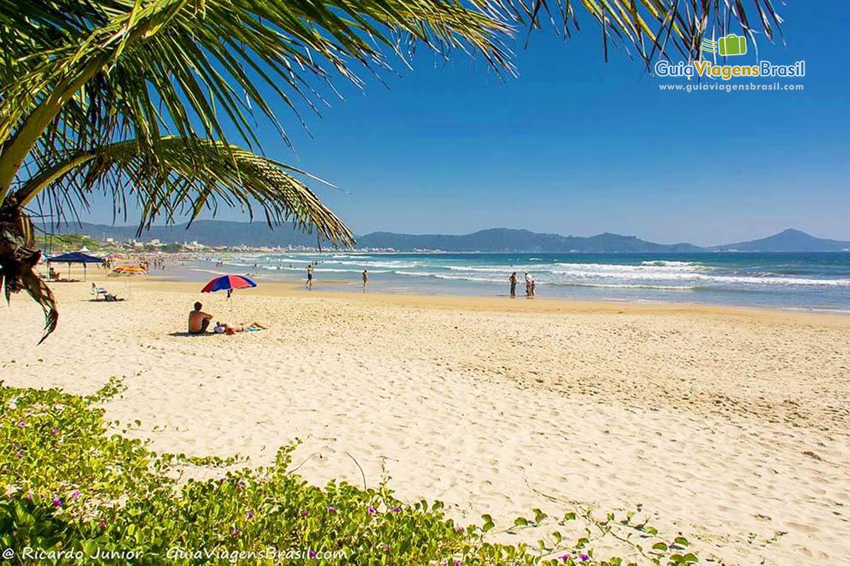 Foto orla da Praia de Mariscal, em Bombinhas, SC.