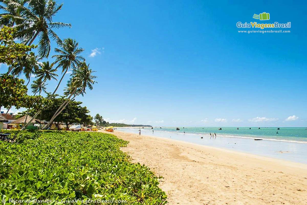Foto da Praia de Maragogi.