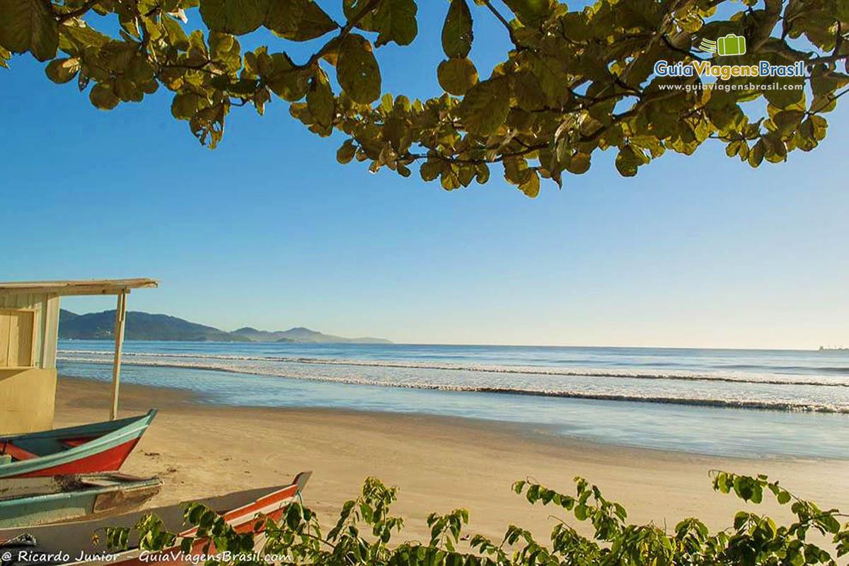 Meia Praia, SC.