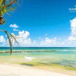 BATE E VOLTA: 7 praias para curtir com a FAMÍLIA perto de SALVADOR