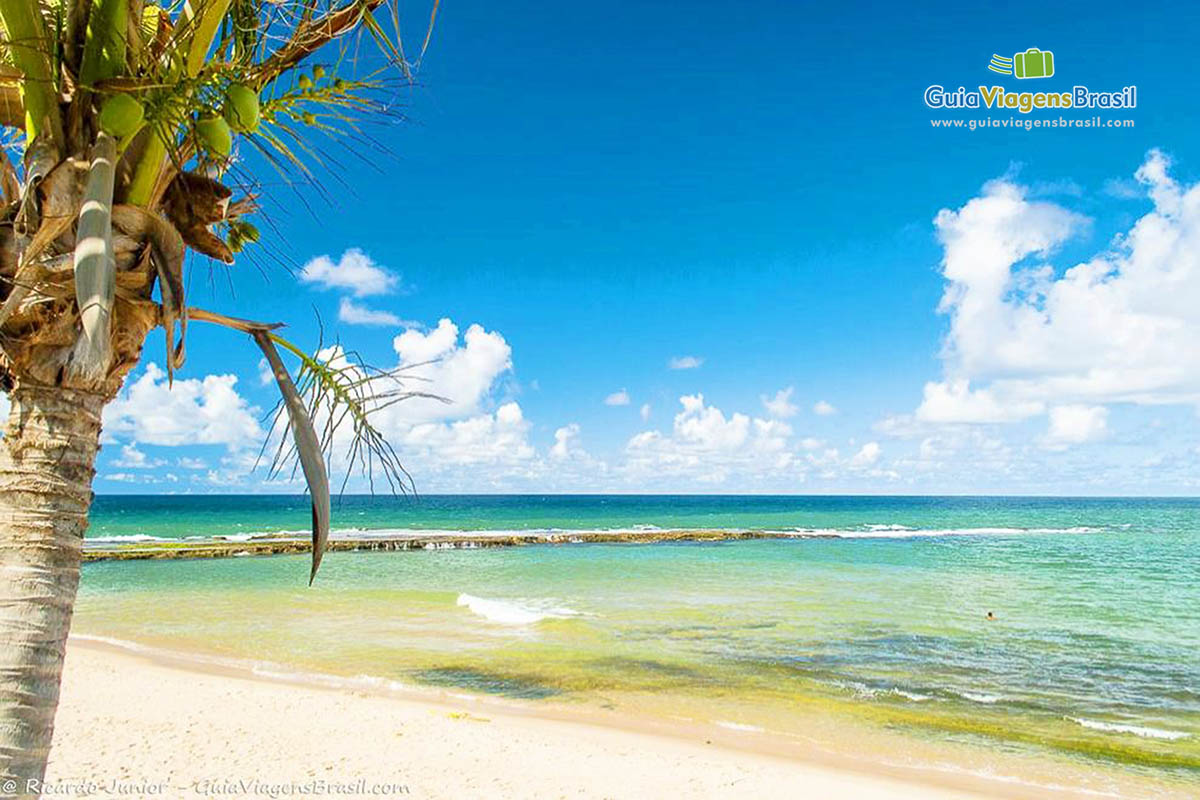 Foto Praia de Arembepe, Bahia.