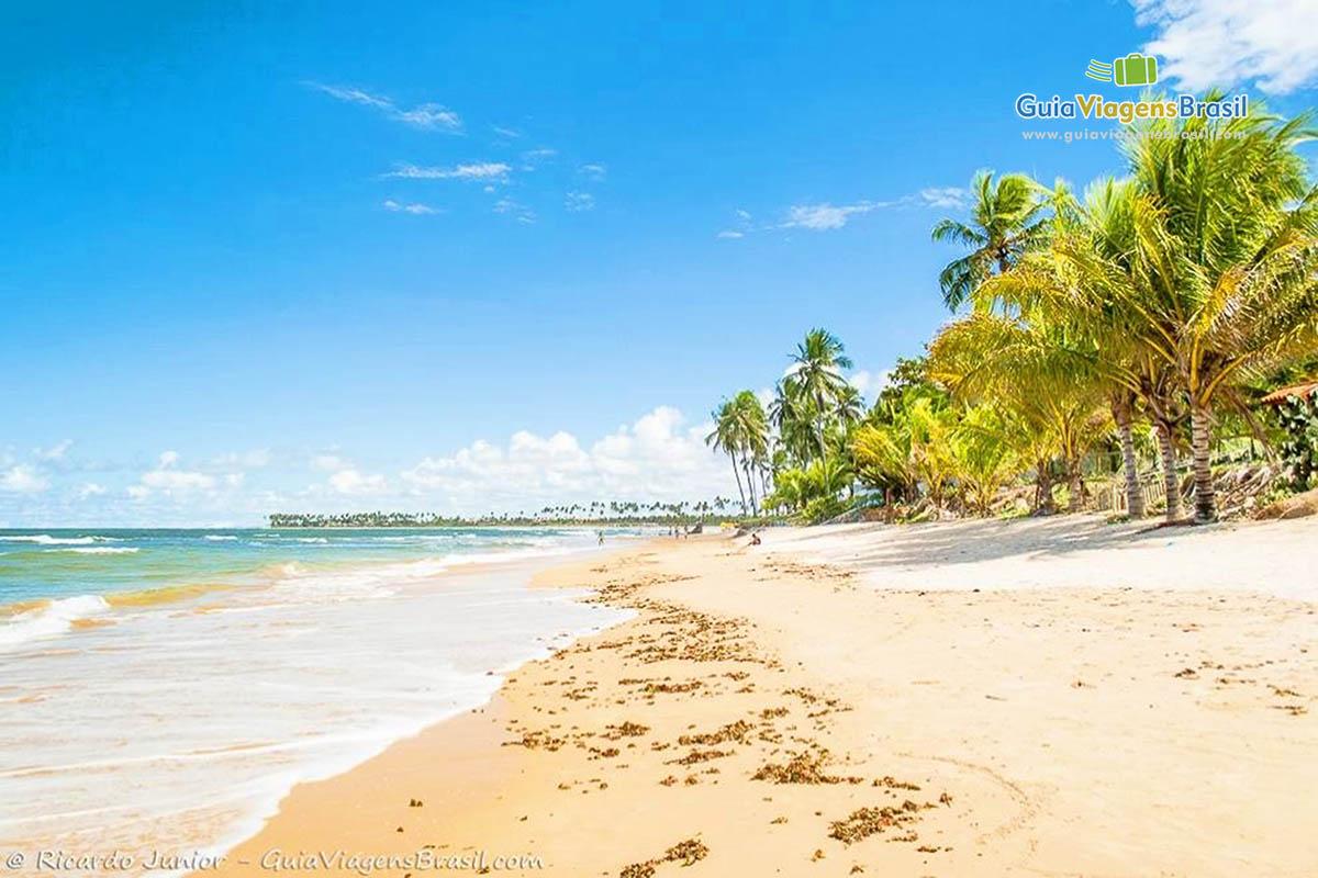 Foto orla da Praia de Itacimirim, BA.