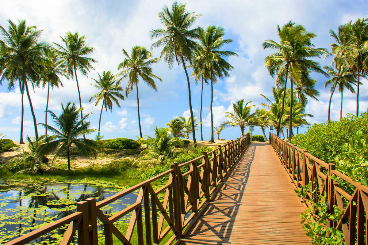 Foto Ponte sobre Rio, Costa do Sauípe, Bahia, BA.
