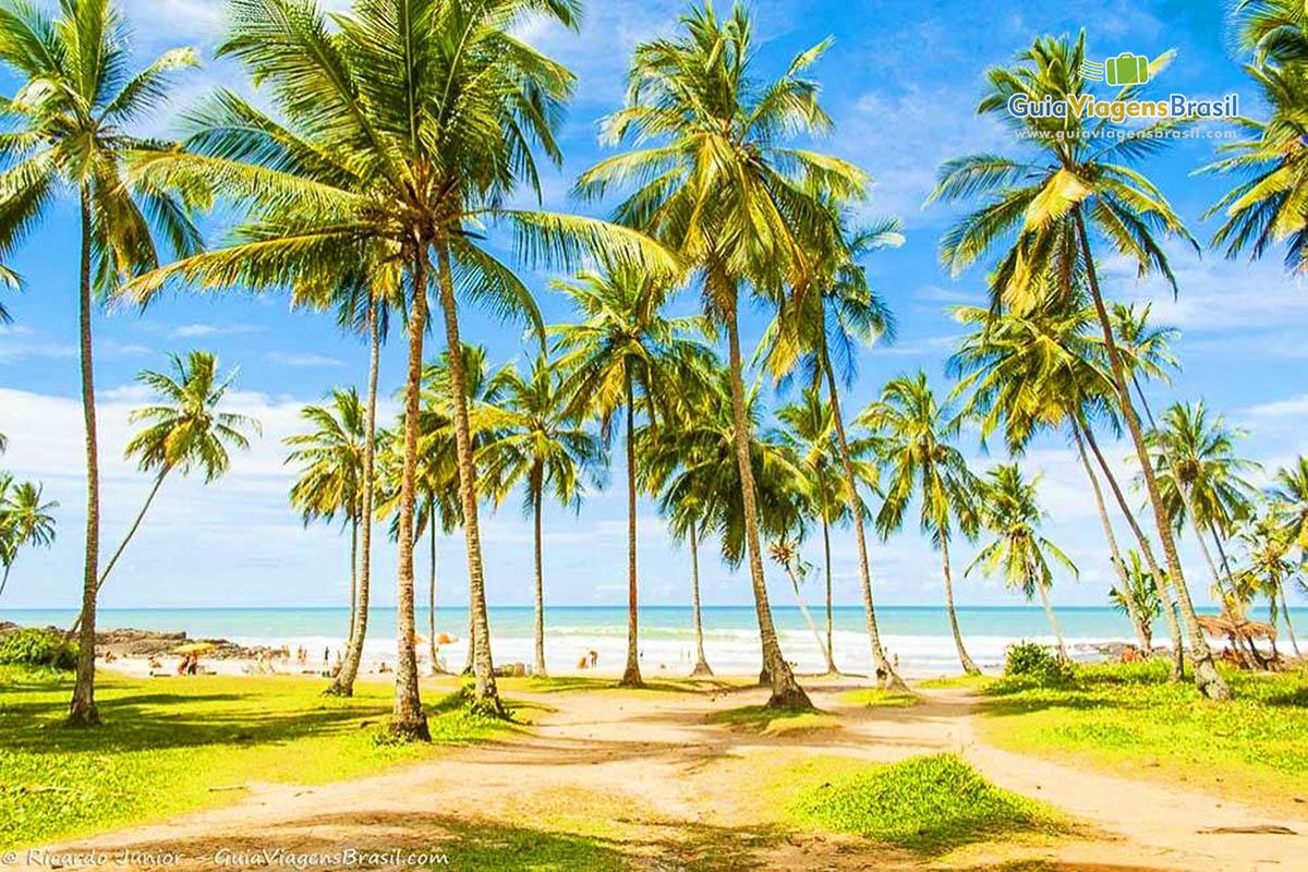 Foto Praia do Resende, em Itacaré, BA.