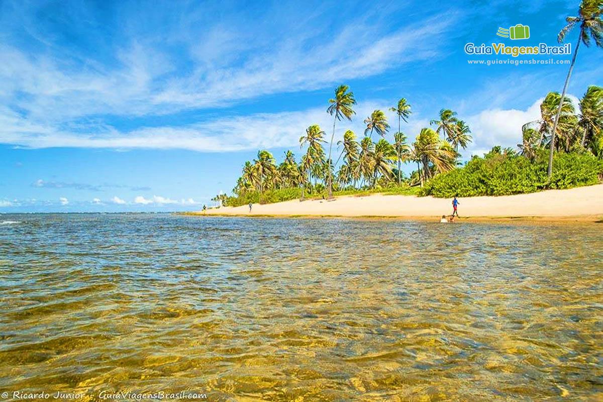 Foto paradisíacas piscinas naturais de Papa Gente, Praia do Forte, BA.