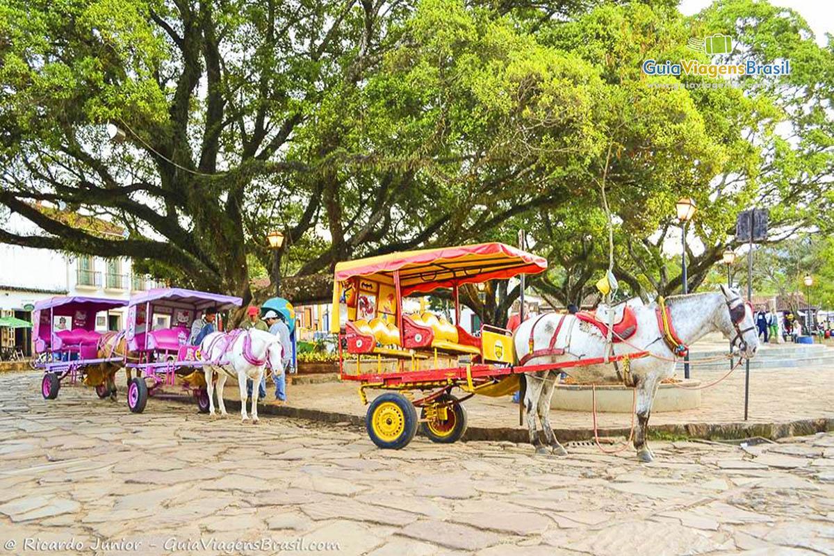 Foto charretes em Tiradentes, MG.