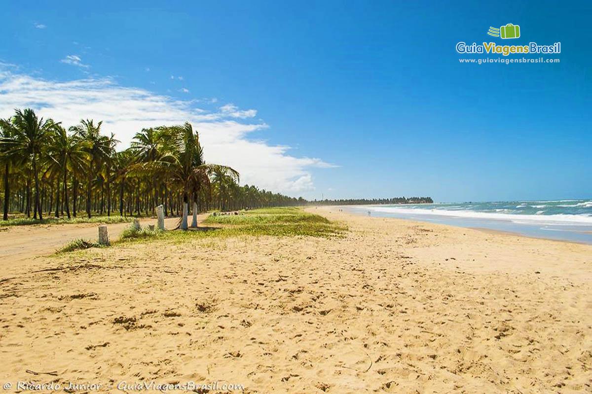 Foto orla da Praia de Maracaípe, em Ipojuca, PE.