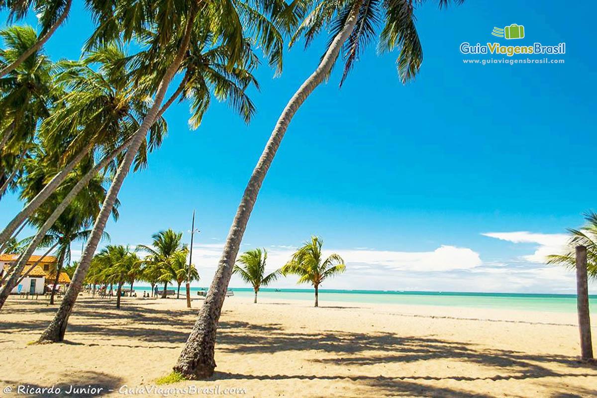 Foto Praia de Japaratinga, Alagoas.